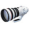 X Canon EF 400mm f/2.8 L IS USM